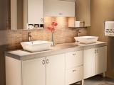 elegantly-modern-kraftmaid-bathroom